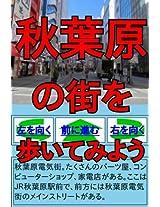 Walk in Akihabara As You Like (Walk in the Town As You Like)