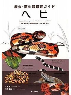 メキシコで「幻の蛇神」が発見される