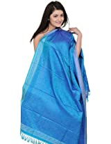 Exotic India Hand-Woven Banarasi Shawl with Tanchoi Weave - Color French BlueColor Free Size
