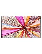 Samsung DB55D 55 Inches Slim Direct-Lit LED Display Television (Black)