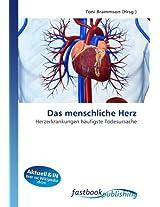 Das menschliche Herz: Herzerkrankungen häufigste Todesursache
