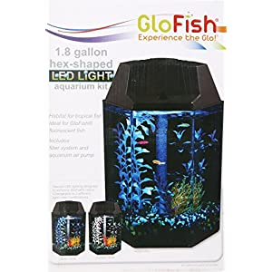 Aquarius Aq12005g Glofish 2 Hex Shape 1.8-Gallon Aquarium Kit