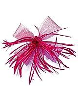 Feather Hair Clip Cum Brooch By Via Mazzini (HA0001)