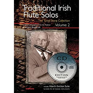 Traditional Irish Flute Solos Vol.2