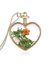 Cilver Fashion Glass Locket Real Dried Flowers Pendant Chain Gold Necklace (Orange)