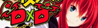 ハイスクールD×D 12  補習授業のヒーローズ (富士見ファンタジア文庫)