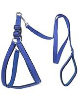 Wonder Wish Dog Harness & Leash Set
