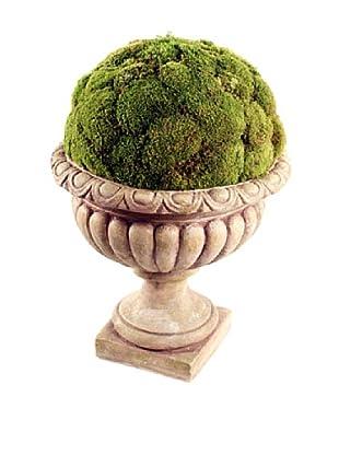 Forever Green Art Handmade Moss Display in Villa Urn