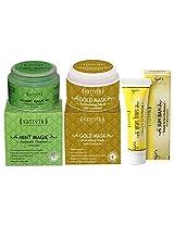Sattvik Organics Restores Natural Fairness Combo- (Mint Magic 100gm, Gold Mask 100gm ,Sun Ban 12gm)