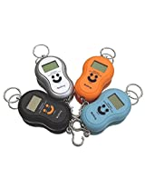 Portable Electronic Luggage Scale with multi-colour option (40kg/10g)