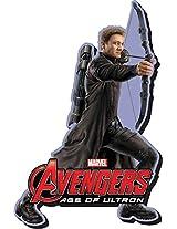Aquarius Avengers 2 Hawkeye Funky Chunky Magnet