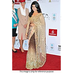 Bollywood Replica Nimrat Kaur Net Saree In Cream and Brown Colour NC536