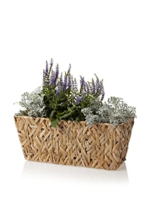 Wald Imports Small Rectangular Random Weave Seagrass Planter (Natural)