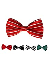 DBFF0001 Multicolored Satin Luxury Boys Boys Pre-Tied Bow Ties Set - 5 Styles Available By Dan Smith