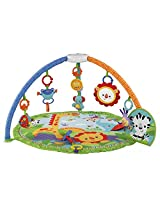 Fisher-Price Musical Gym