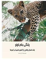 Lulu the Leopard: Based on a True Okambara Story: Volume 1
