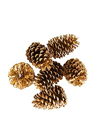 Sage & Co. Set of 6 Large Pine Cones in Bag