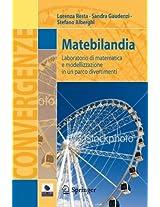 Matebilandia: Laboratorio di matematica e modellizzazione in un parco divertimenti (Convergenze)