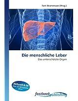 Die menschliche Leber: Das unterschätzte Organ