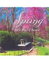 Musical Aura - Spring