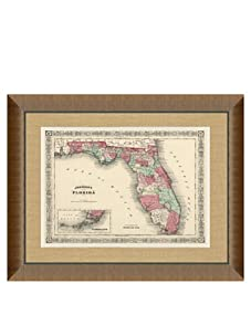 """Johnson and Ward Antique Map of Florida, 1860's, 24"""" x 26"""""""