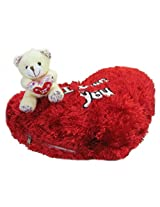 Tickles Teddy I love you cushion kids Boy Girl Gift