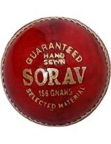 Bajaj Enterprises-Sorav Cricket Ball Box-6 balls
