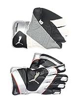 Puma grenadine-black Wicket keeping gloves