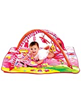 Attractive Play Gym Baby Bed