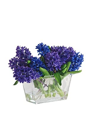 Hyacinth in Glass Vase, Blue/Purple