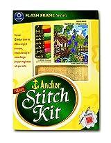 Anchor Stitch Kit - Pink Posy