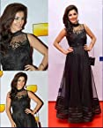 IT FilmFare Black Net Long Gown - LFBWSL127
