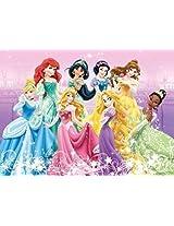 Disney Princess Snow White Cinderella 500 Piece Jigsaw Puzzle Pc156