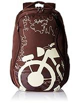 Skybags Raider 03 Dark Brown Backpack