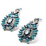 Ariela Elegant Blue Drop Earrings