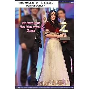 Katrina Kaif Zee Cine Award Gown with tasar net pl