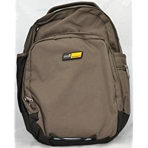 Liviya Laptop Backpack (Grey)