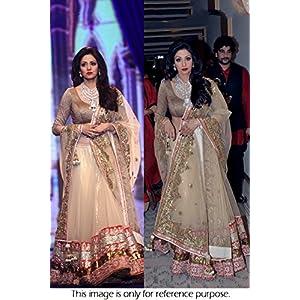 Bollywood Replica Sri Devi Net Lehenga In Cream Colour NC790