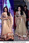 Bollywood Replica Sri Devi Net Lehenga In Cream Colour NC790
