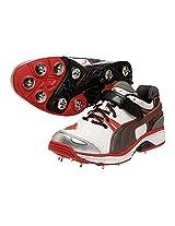 Puma Men's Platinum Full Spike Sport Cricket Shoes