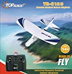 Cessna 781 Electric 2 Ch Infrared Remote Control RC Airplane RTF (Colors Vary)