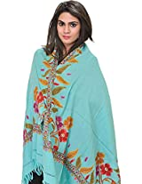 Exotic India Stole from Kashmir with Ari Hand-Embroidery on Border - Color Aqua Sky Color Free Size