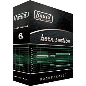 LIQUID HORN SECTION
