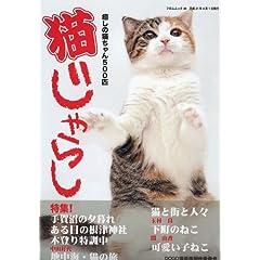 猫じゃらし―癒しの猫ちゃん500匹 (フロムムック 46) (単行本) GOGO猫画像制作委員会 (編さん)
