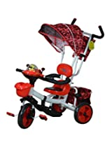 Sunbaby Incredible Tricycle, Red