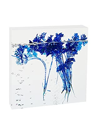 Art Block Blue Parsley - Fine Art Photography On Lacquered Wood Blocks
