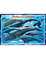 Eurographics Eurokids 0082 Jigsaw Puzzle 100 Pieces 13 In. X 19 In. Whales And Dolphins