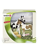 Schleich Pinto Mare and Yearling Scenery Pack