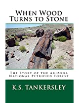 When Wood Turns to Stone: The Story of the Arizona National Petrified Forest