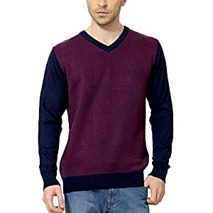 Allen Solly Men Regular Fit Sweater_AMSW513S00923_ M